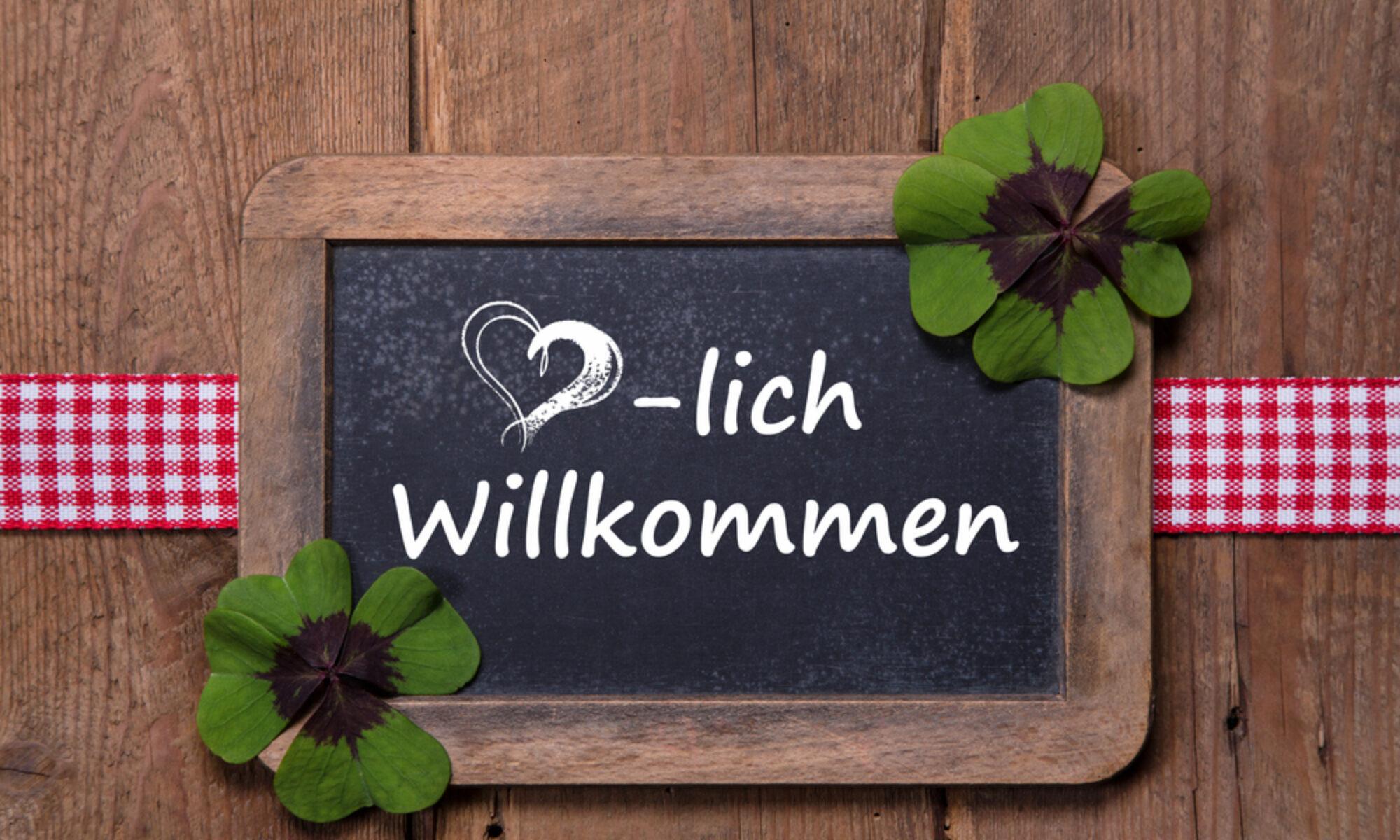 Kaminholzhh